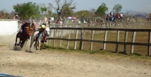 Kuda Angin Laut Final 1