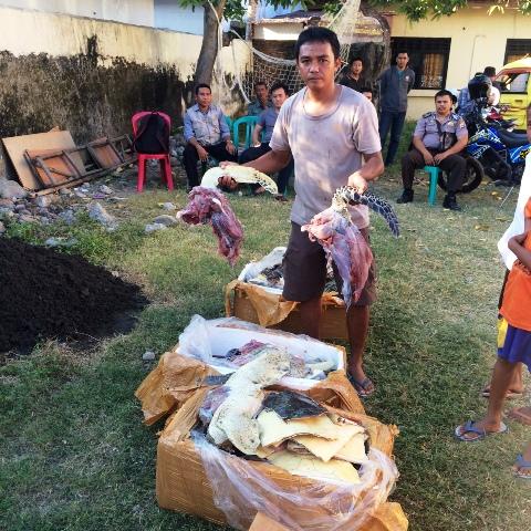 Anggota Polair perlihatkan BB Daging Penyu