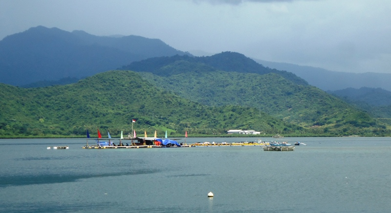 keramba apung ikan kerapu Pulau Bungin