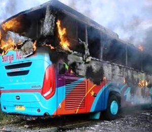 Bakar Bus 1