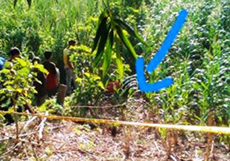 Lokasi penemuan korban dalam kondisi tak bernyawa (foto: FB Langit Jingga)