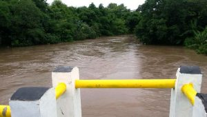 sungai-moyo