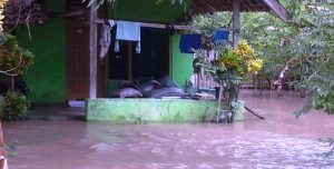 Banjir Susulan Plampang